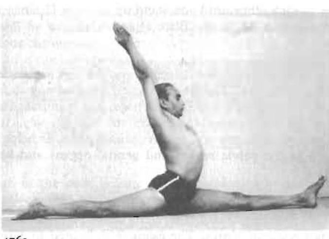 And here is Mr. BKA Iyengar, in hanumanasana.... The torso doing the same work as in Urva Hastasana. Note the deeply grounded humerous and exquisite kidney length!  I am willing to bet his perineum is working enthusiastically, to support this much organization.